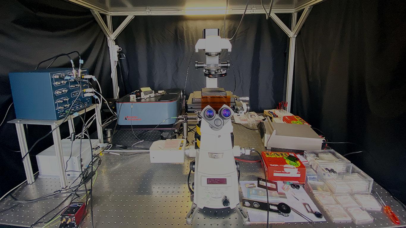 Photoluminescence-spectra-measuring system